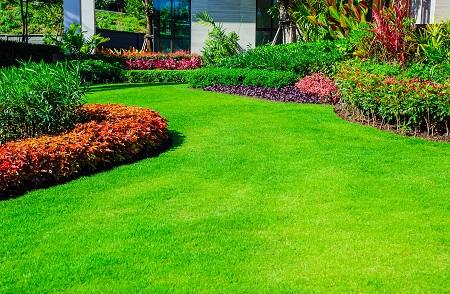 Garden Clearance Hacks